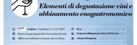 Elementi di degustazione vini e abbinamento enogastronomico